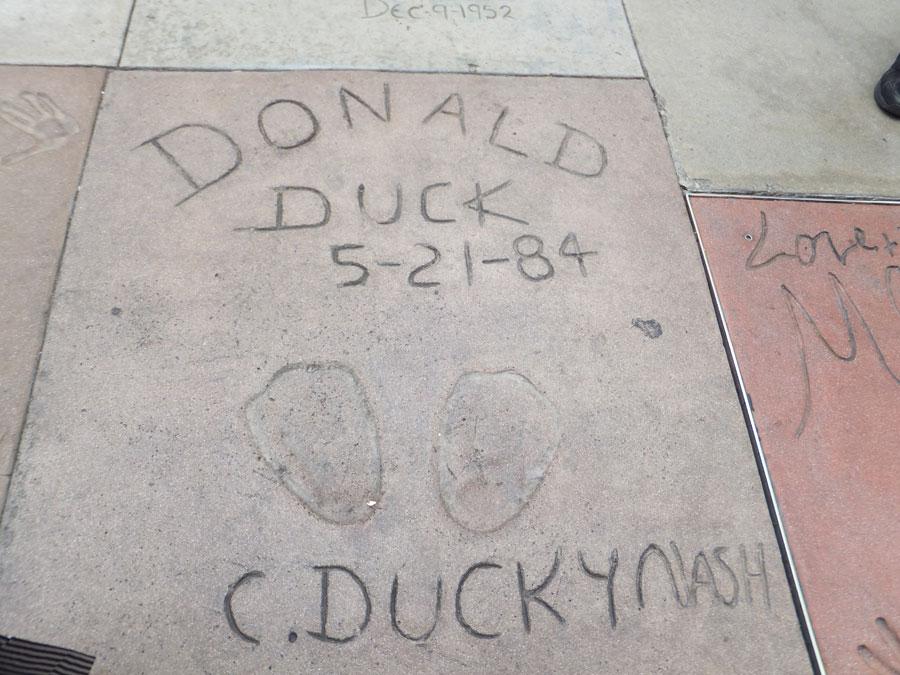 8.ハリウッド ドナルドの足跡